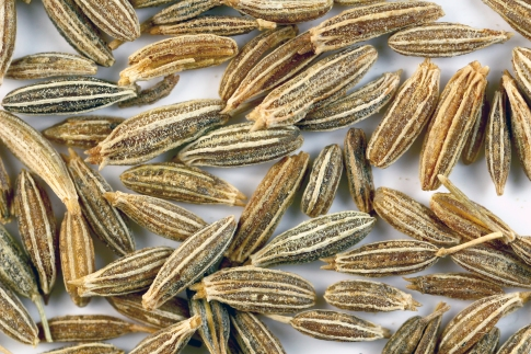 Cumin seeds. Photo from Wikipedia